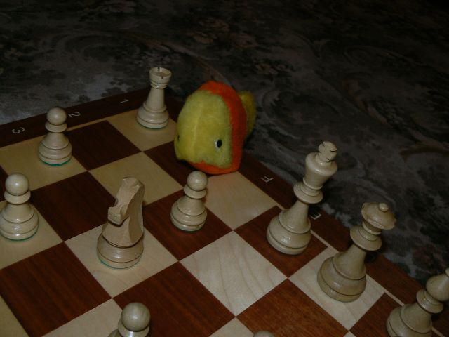 http://sweb.cz/OndrejLiska/small_fry-prague-chess_2.jpg