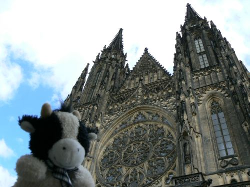 http://sweb.cz/OndrejLiska/smooch-prague-cathedral.jpg